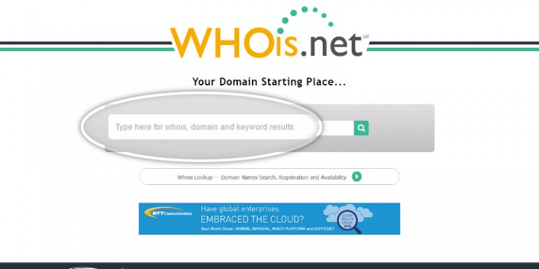 consultar dados do dominio no whois net