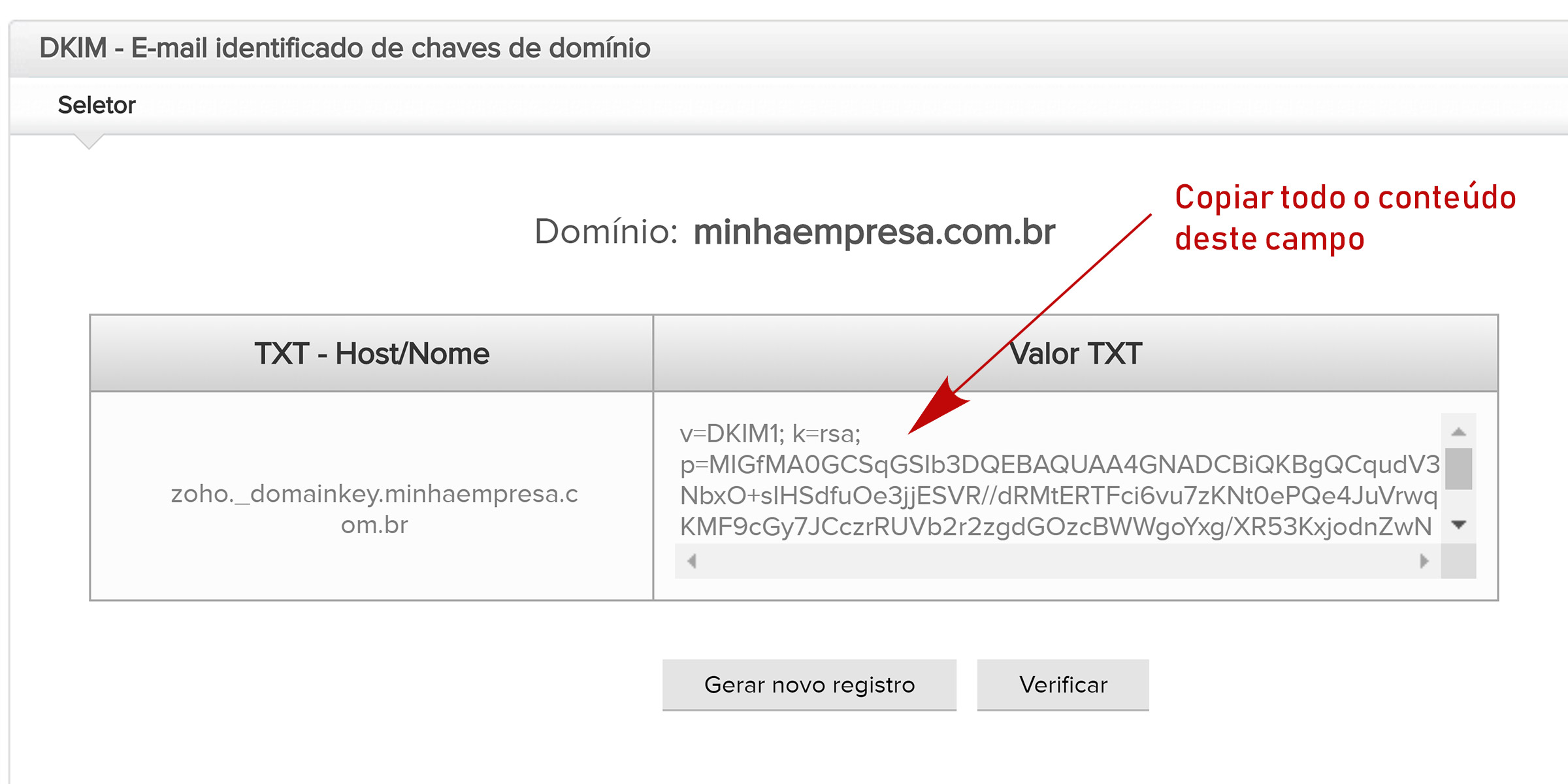 zoho mail chave dkim